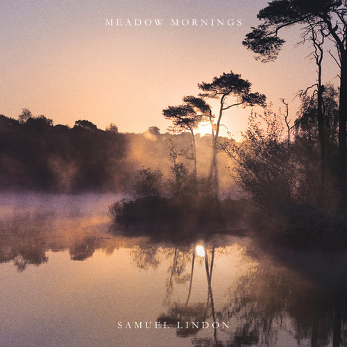Meadow Mornings by Samuel Lindon