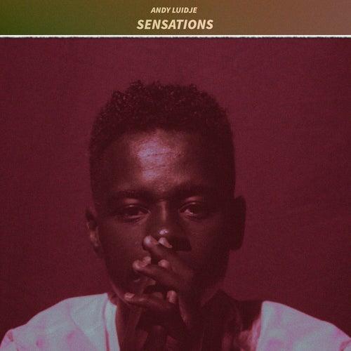 Sensations by Andy Luidje