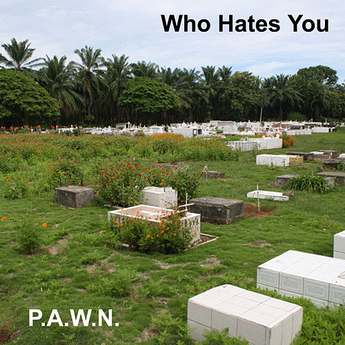 Who Hates You by DJ Pawn