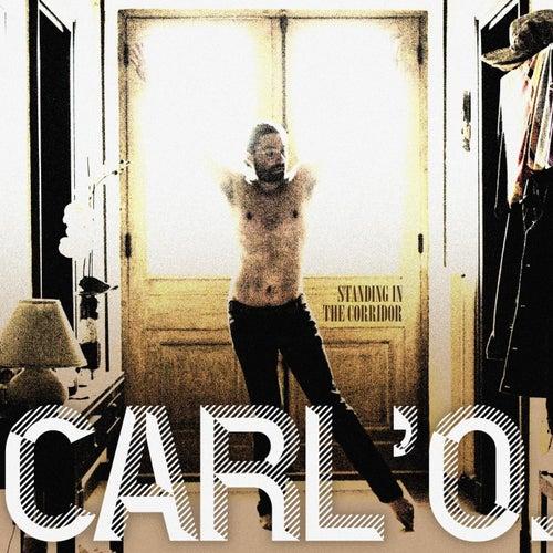 Standing in the Corridor de Carlo