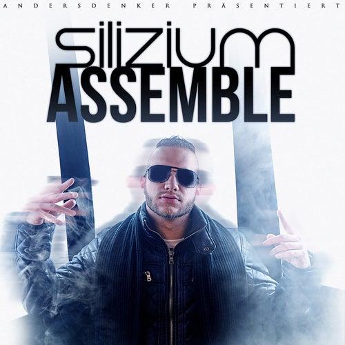 Assemble von Silizium