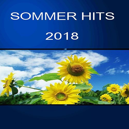 Sommer Hits 2018 von Various Artists