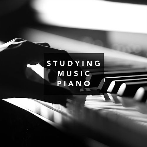 Studying Music Piano von Various Artists