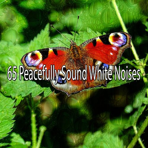 65 Peacefully Sound White Noises de Meditación Música Ambiente