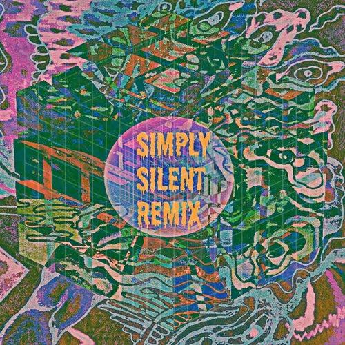 Remix von Simply Silent