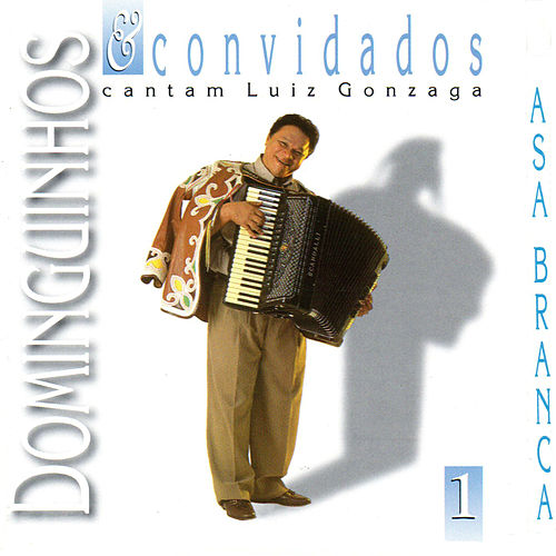 Dominguinhos e Convidados Cantam Luiz Gonzaga, Vol. 1 von Dominguinhos