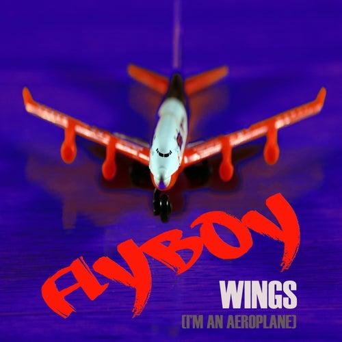 Wings (I'm an Aeroplane) de Flyboy