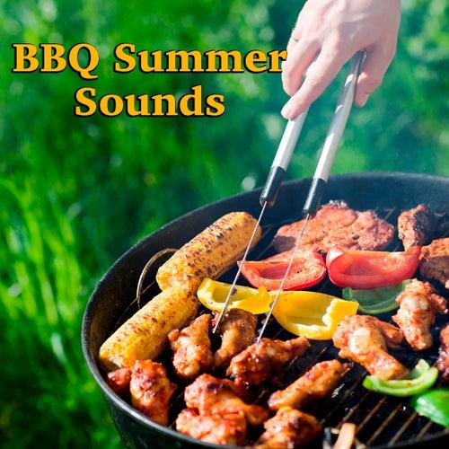BBQ Summer Sounds von Various Artists