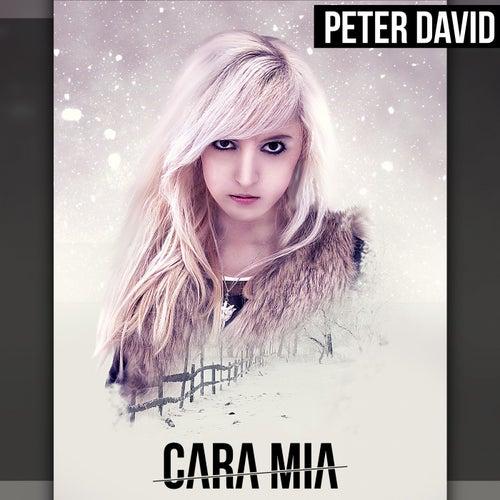 Cara Mia von Peter David