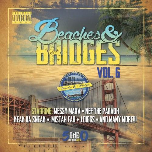 Beaches & Bridges Vol. 6 de Various Artists