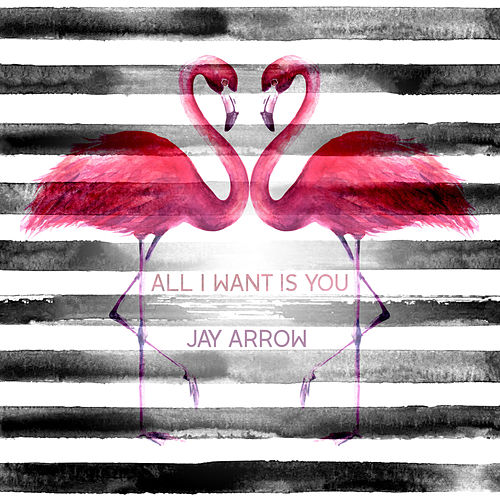 All I Want Is You de Jay Arrow