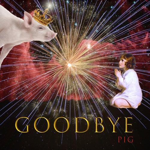굿바이 Goodbye by Pig