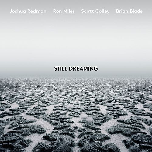 Unanimity Feat Ron Miles Scott Colley Brian Blade By
