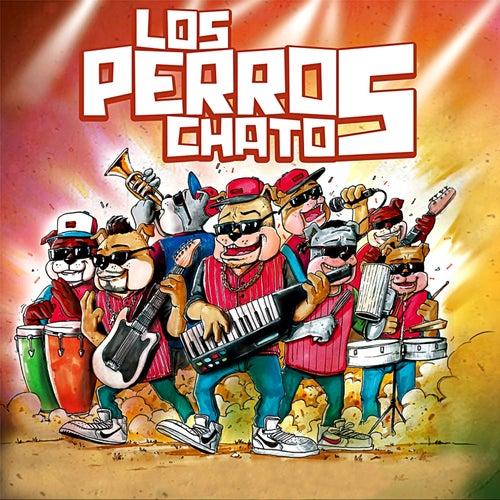 No Soy el Mismo by Los Perros Chatos