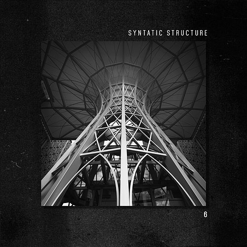 Syntatic Structure 6 by Various Artists