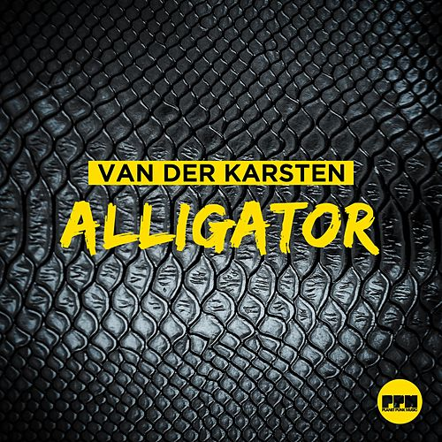 Alligator by Van Der Karsten