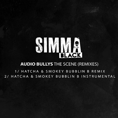 The Scene (Hatcha & Smokey Bubblin B Remix) von Audio Bullys