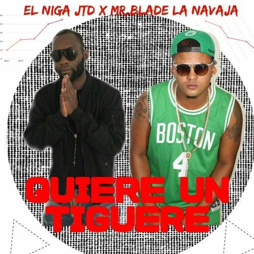 Ella Quiere un Tiguere (feat. Mr.blade) de El Niga JTD