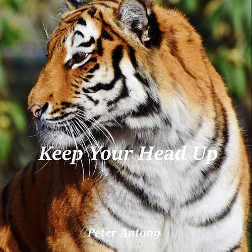 Keep Your Head Up de Peter Antony