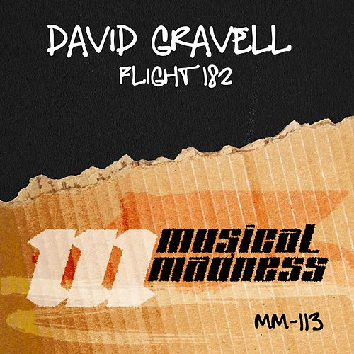Flight 182 by David Gravell