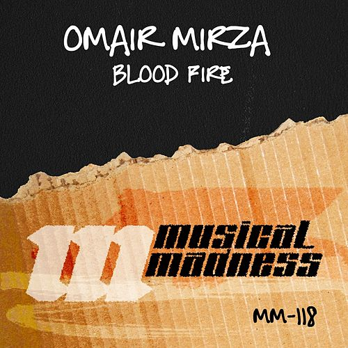 Blood Fire de Omair Mirza
