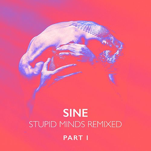 Stupid Minds Remixed, Pt. 1 von Sin e
