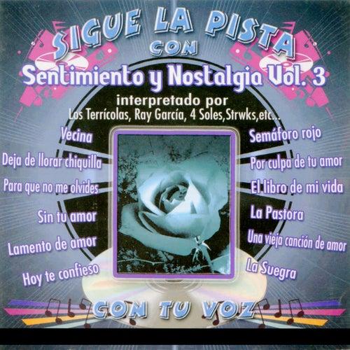 Sigue La Pista Del Sentimiento Y Nostalgia, Vol. 3 de Silvio Rodriguez