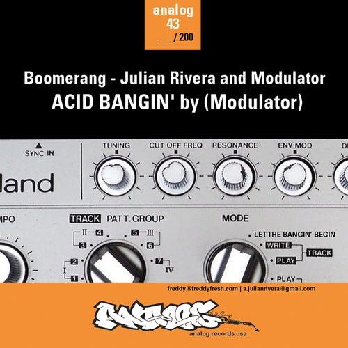Acid Bangin' de Various Artists