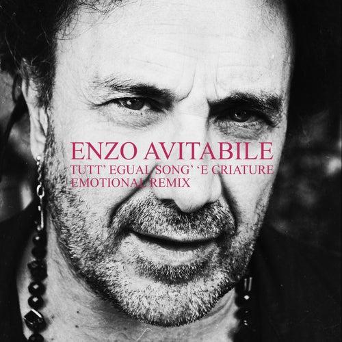 Tutt' egual song' 'e criature (EMOTIONAL Remix) de Enzo Avitabile
