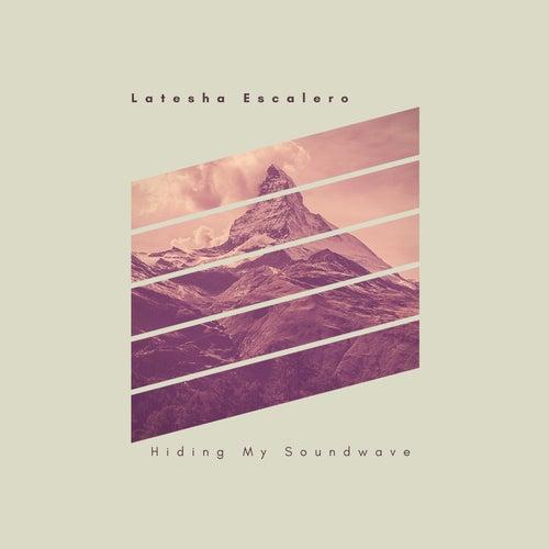 Hiding My Soundwave de Latesha Escalero
