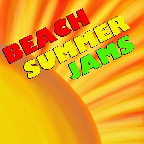Summer Beach Jams by Various Artists