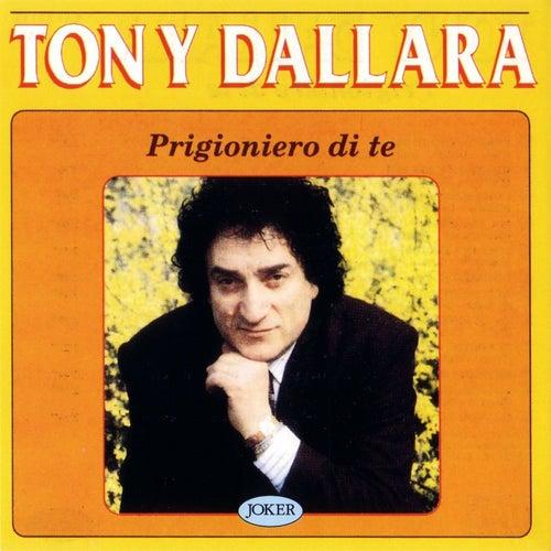 Prigioniero di te di Tony Dallara