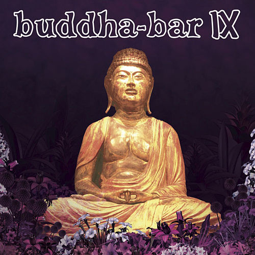 Buddha Bar IX von Various Artists