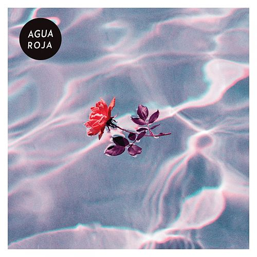 Roses by Agua Roja