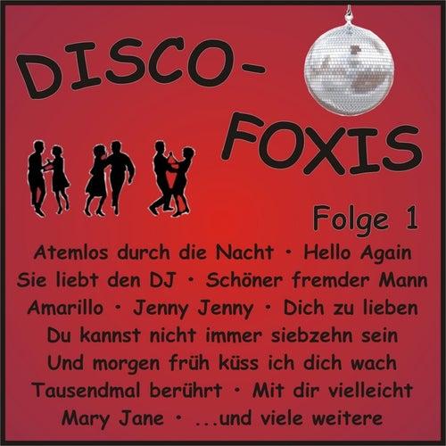 Disco-Foxis, Folge 1 von Various Artists