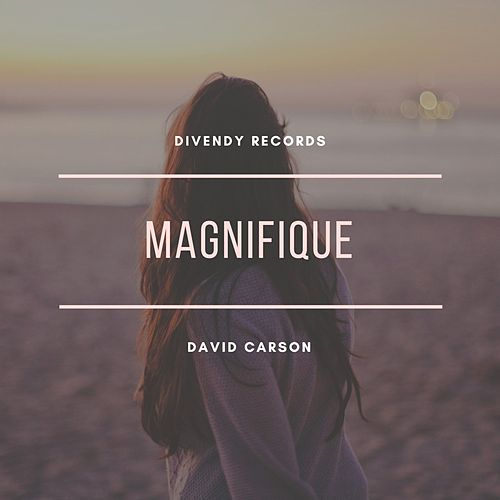 Magnifique by David Carson