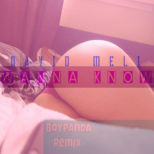 Wanna Know (Remix) de David Meli