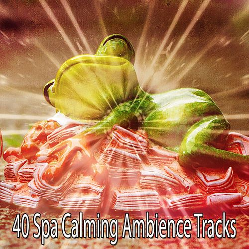 40 Spa Calming Ambience Tracks by Relaxing Spa Music