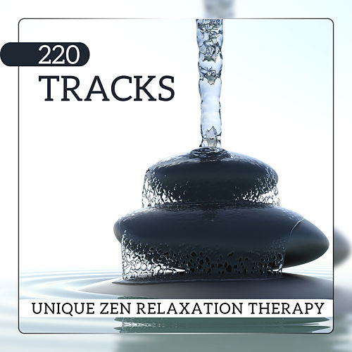 220 Tracks (Unique Zen Relaxation Therapy, Optimal Healing Spirituality Effects, Long Meditation Session) de Various Artists