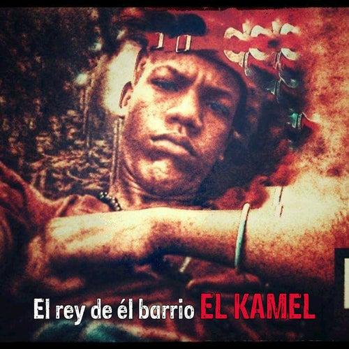 El Ray de el Bario by Kamel