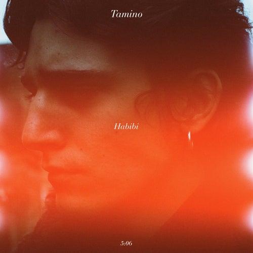 Habibi by Tamino