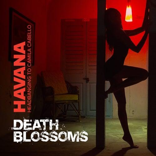 Havana – Headbanging to Camila Cabello di Death Blossoms