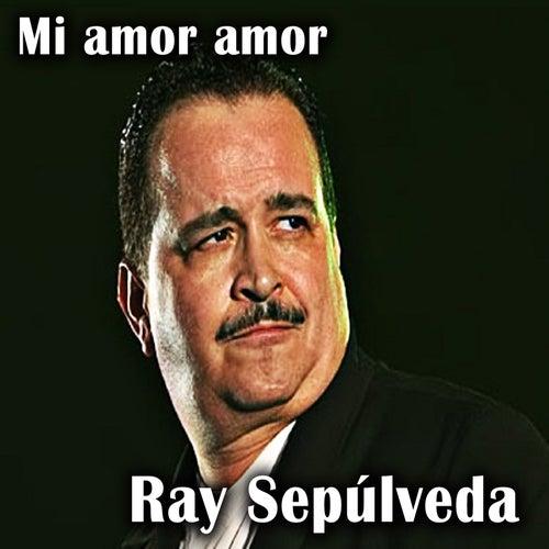 Mi Amor Amor de Ray Sepulveda