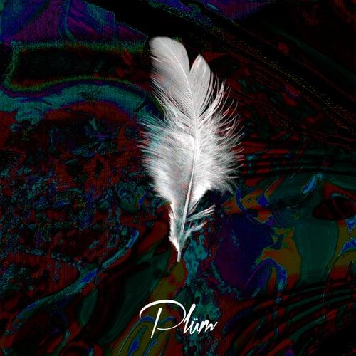 Eleven by Plüm