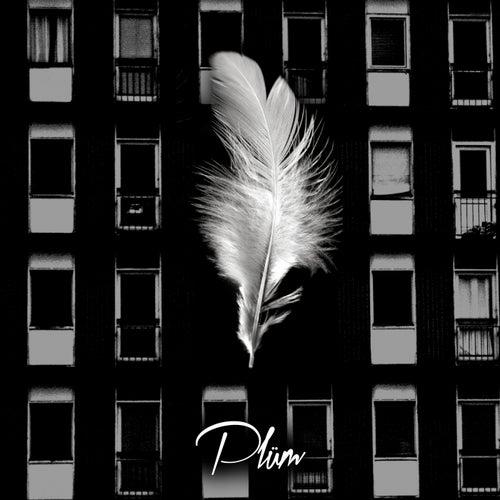 Petals by Plüm
