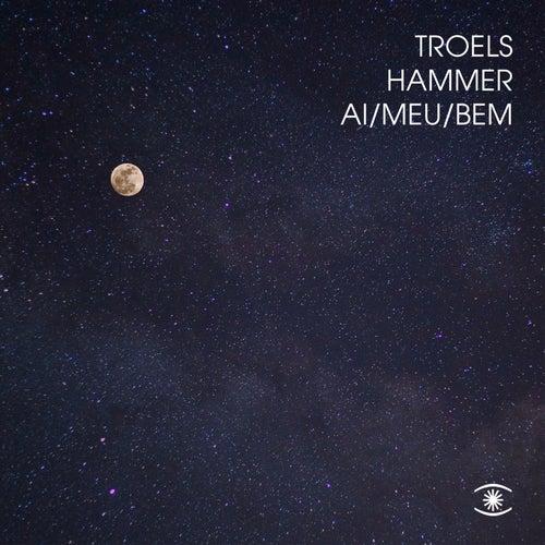 Ai Meu Bem by Troels Hammer