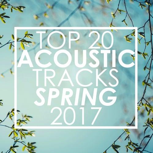 Top 20 Acoustic Tracks Spring 2017 de Guitar Tribute Players