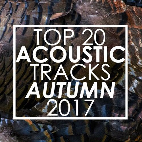 Top 20 Acoustic Tracks Fall 2017 de Guitar Tribute Players