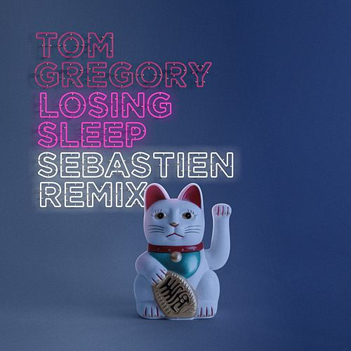 Losing Sleep (Sebastien Remix) von Tom Gregory