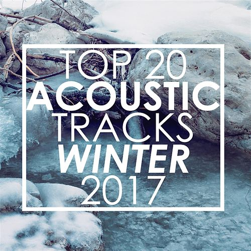 Top 20 Acoustic Tracks Winter 2017 de Guitar Tribute Players
